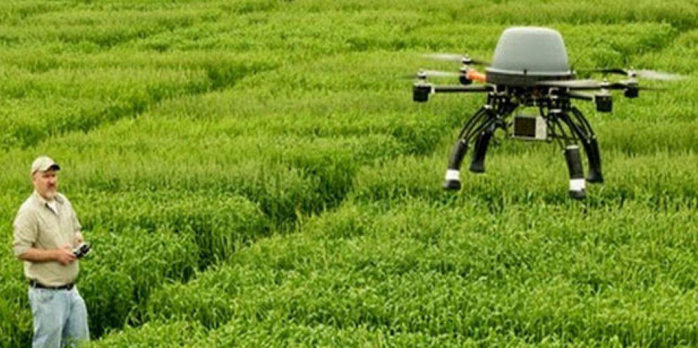 Agricoltura 4.0: il Consorzio agrario Fvg fa il punto