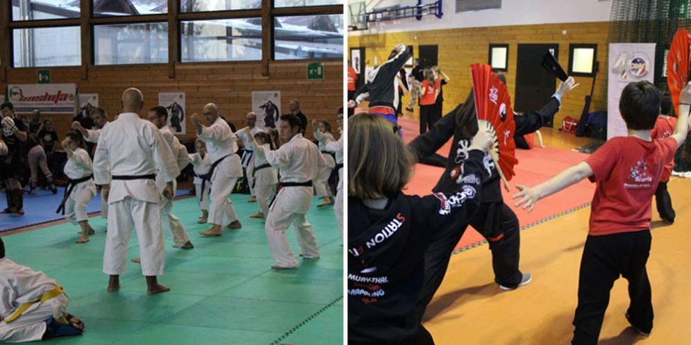 A Piani di Luzza il seminario internazionale delle arti marziali!