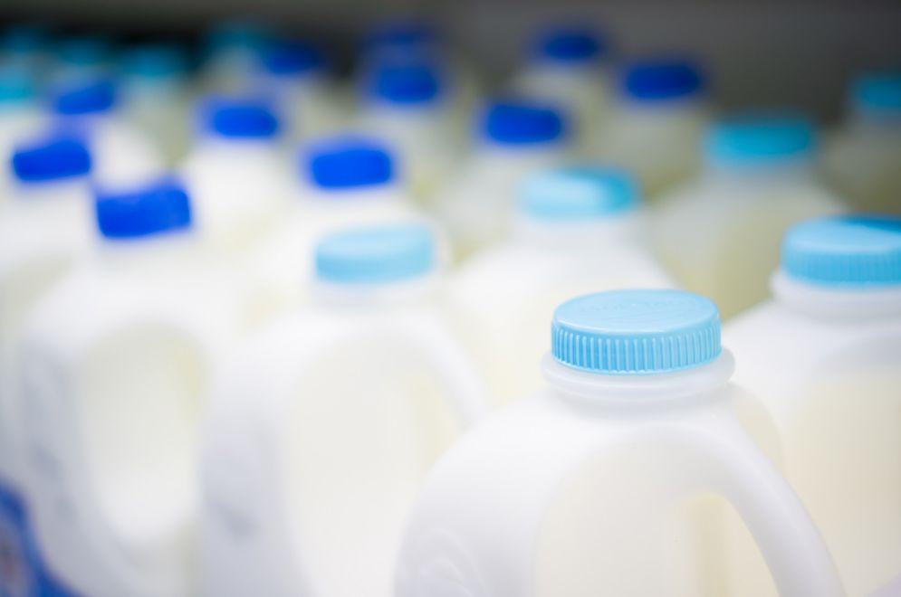 Dagli scarti del latte nasce il packaging 100% biodegradabile