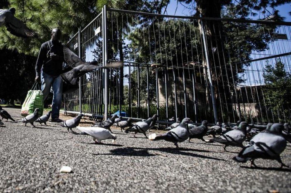 Un'immagine del parco di Colle Oppio