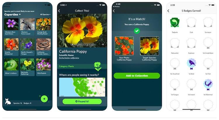 L'app che riconosce piante e fiori come Shazam