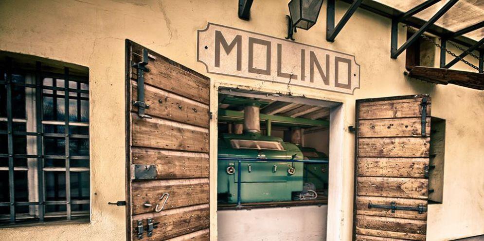 'Molini a porte aperte': alla scoperta dei processi di lavorazione a Trivignano