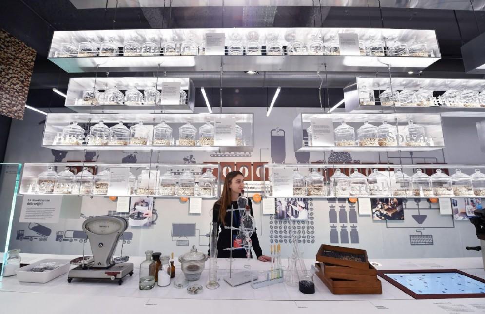 Lavoro e cultura, Nuvola Lavazza è realtà: così rinasce il quartiere Aurora