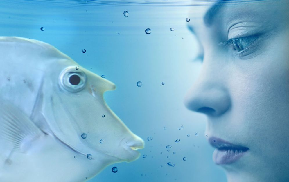 Donna pesce