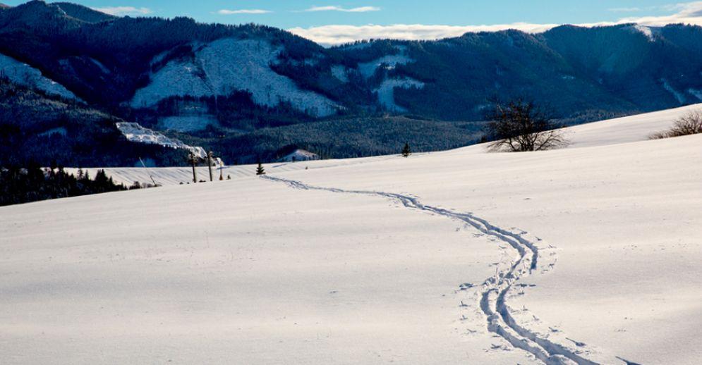 Cadavere trovato tra le neve a Bardonecchia