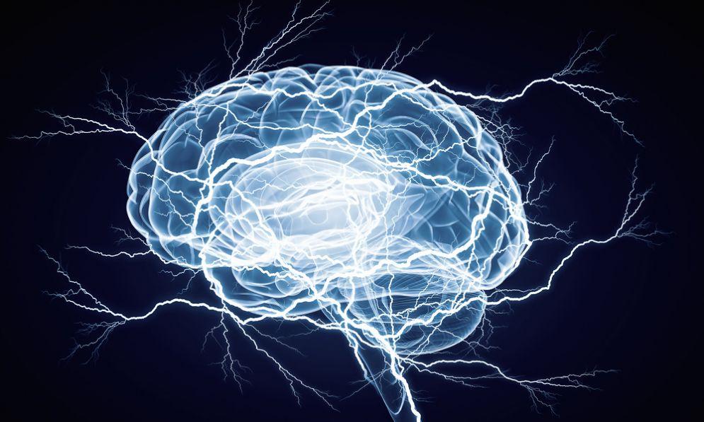 Cervello e demenza
