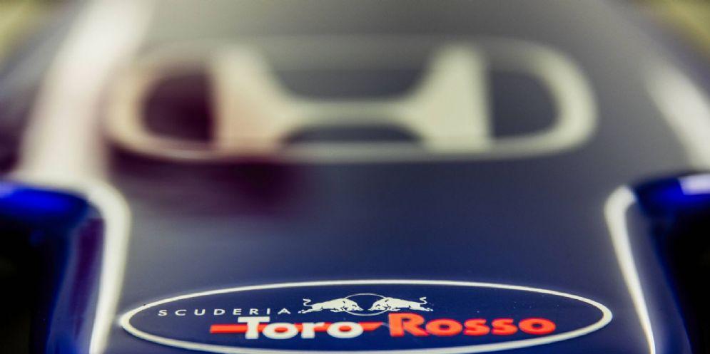 Il marchio Honda sul musetto della Toro Rosso