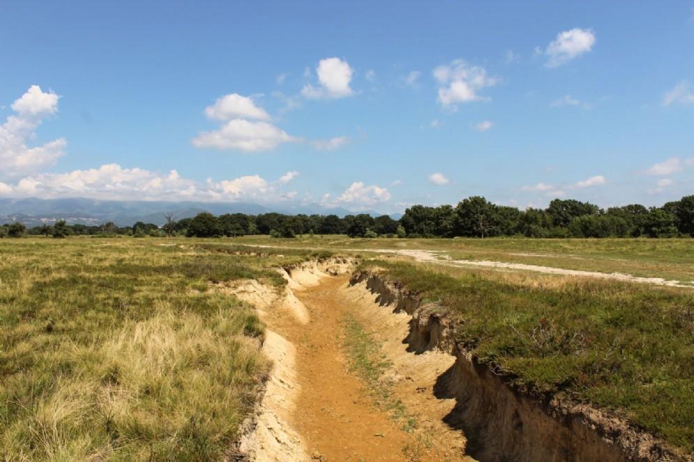 Le Baragge nascono in ere geologiche a causa dell'azione di erosione e smantellamento, operata dai torrenti su antiche pianure