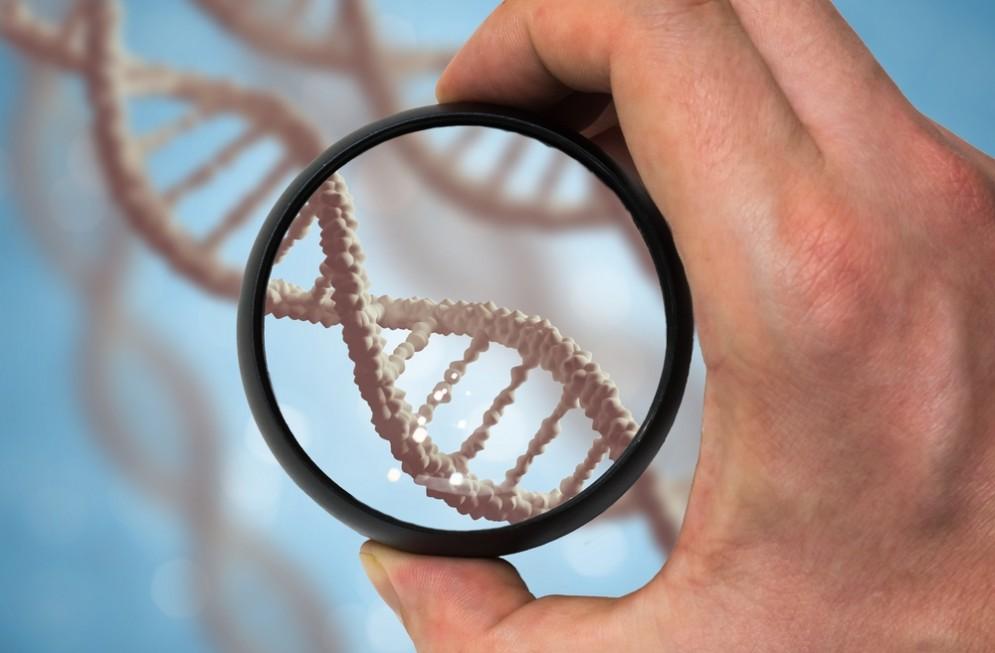 I geni che causano il cancro provengono dalle piante?
