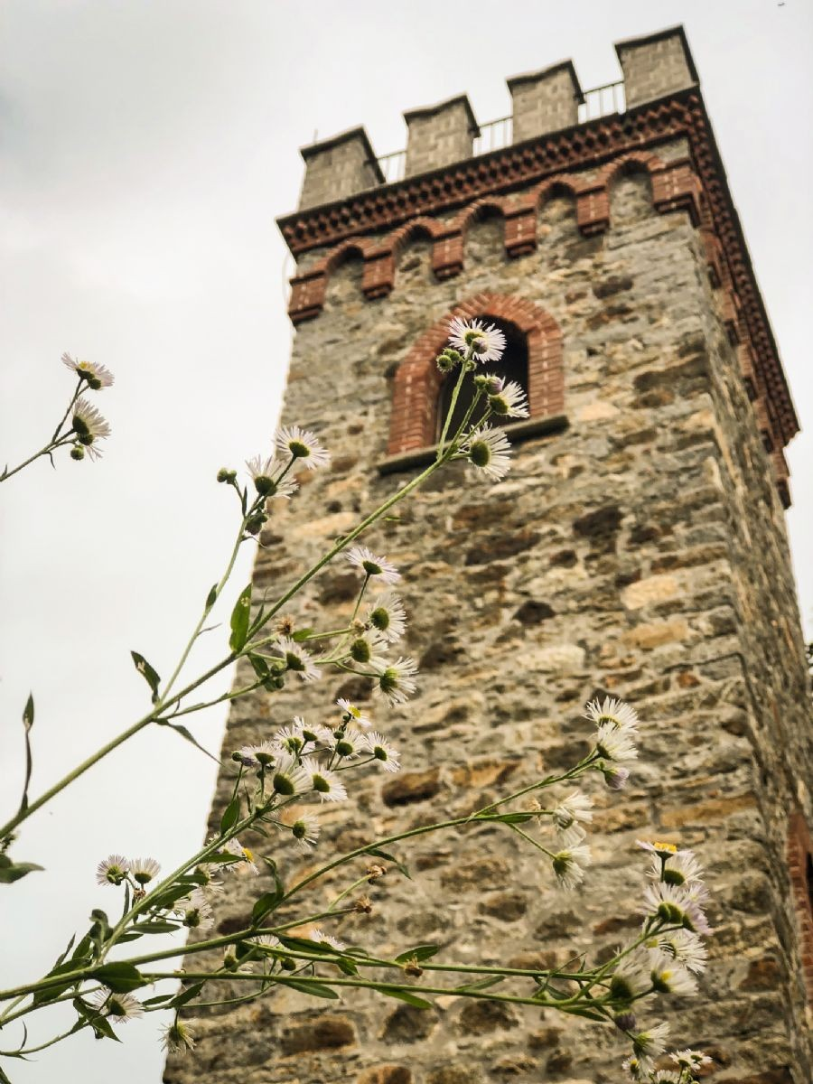 La torre della Burcina