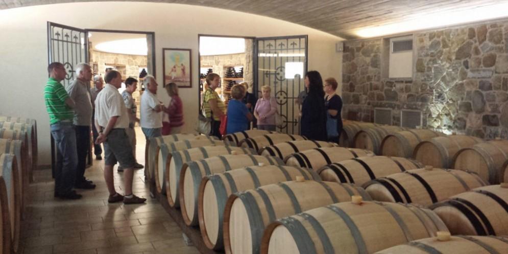 EnoTour 2018: alla scoperta dei vini biologici ottenuti da antichi vigneti