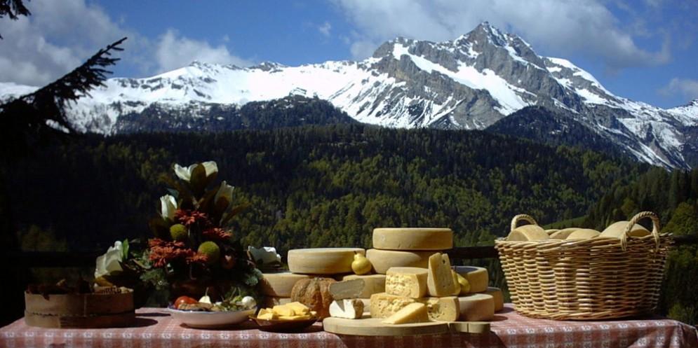 Fra i monti della Carnia: un agosto da vivere e gustare