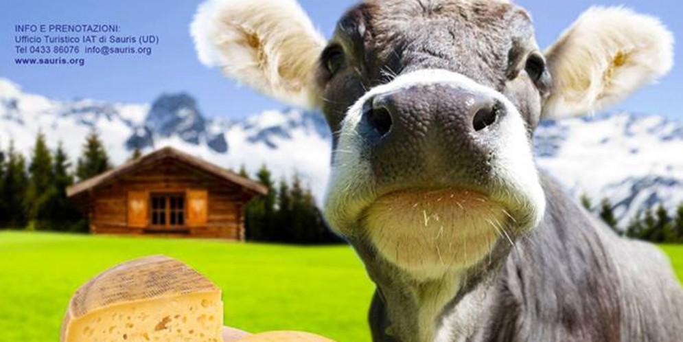 A Lateis è tempo di 'Festa del formaggio di malga e dei piccoli frutti'