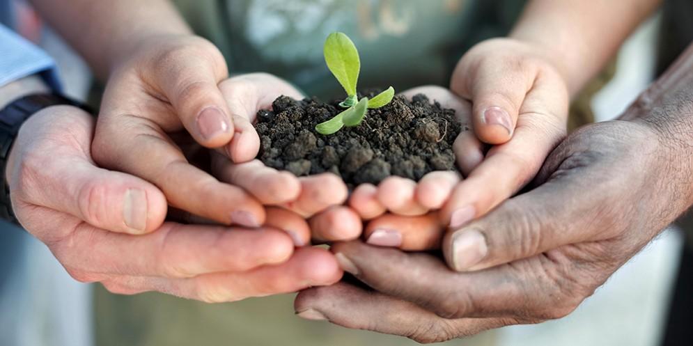 """Confagricoltura: al via la terza edizione del concorso """"Coltiviamo agricoltura sociale"""""""