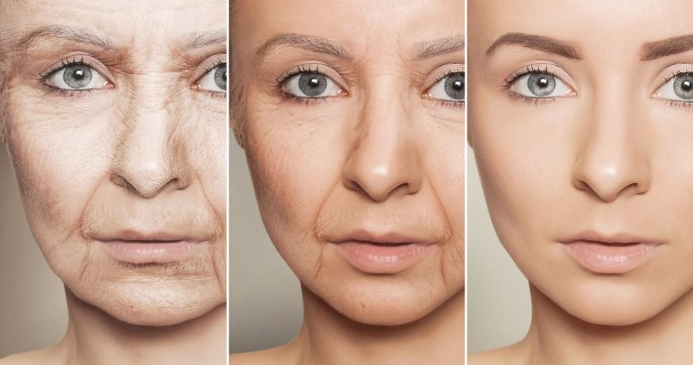 Scienziati riescono a rallentare l'invecchiamento cellulare