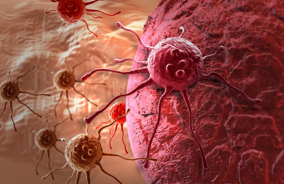 Scoperto il meccanismo che blocca le metastasi