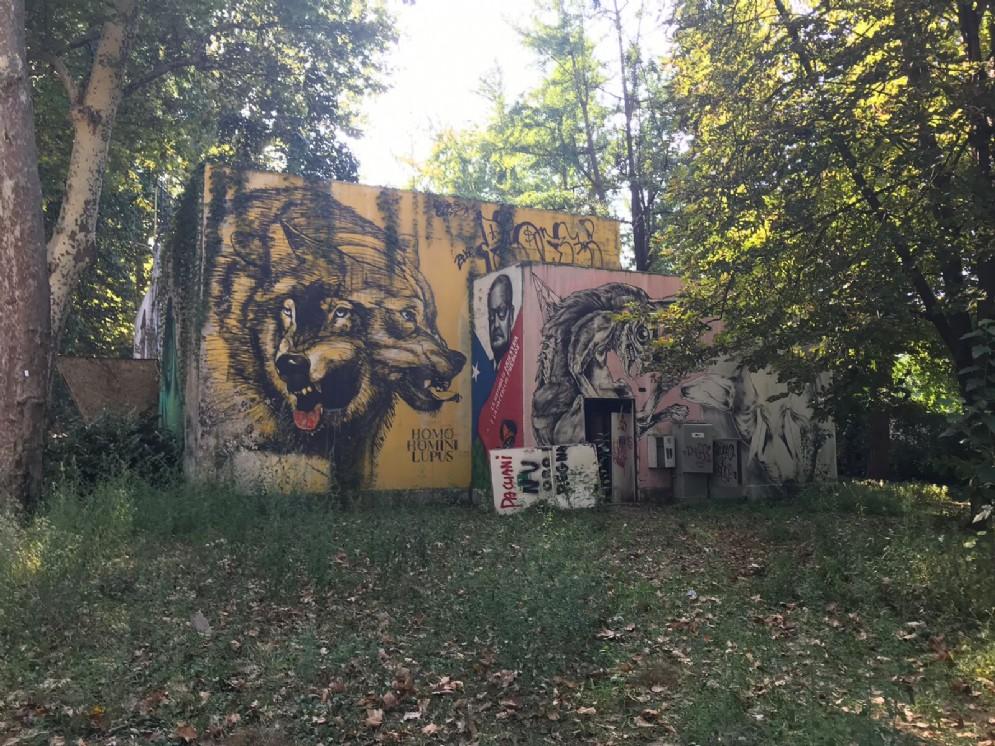 Parco Michelotti, una ferita aperta lungo il Po: 20.000 metri quadri di degrado