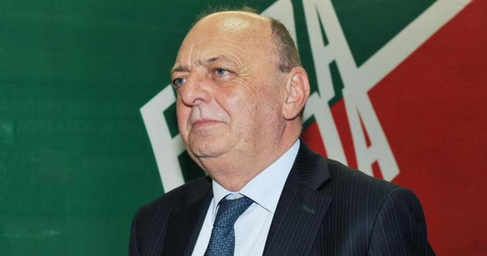 Gilberto Picchetto, Deputato e coordinatore piemontese di Forza Italia