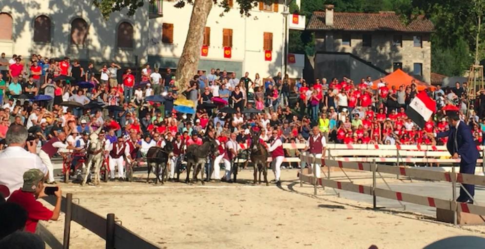 Corsa degli asini: a Fagagna vince ancora Beppina