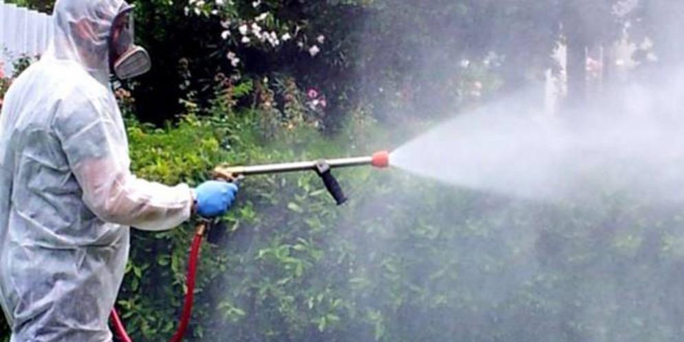 Troppe zanzare: chiuso il parco 'Martiri delle foibe'