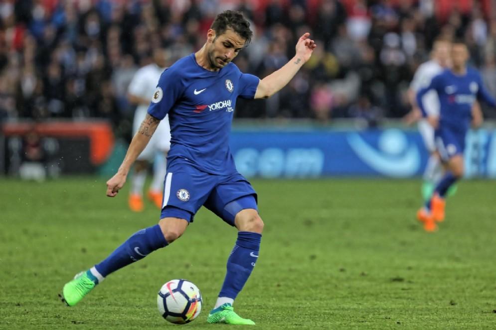 Cesc Fabregas, centrocampista spagnolo del Chelsea