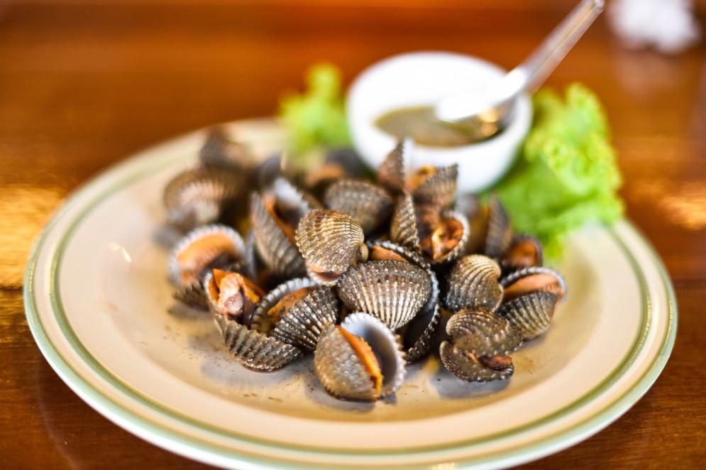 Molluschi contro il cancro