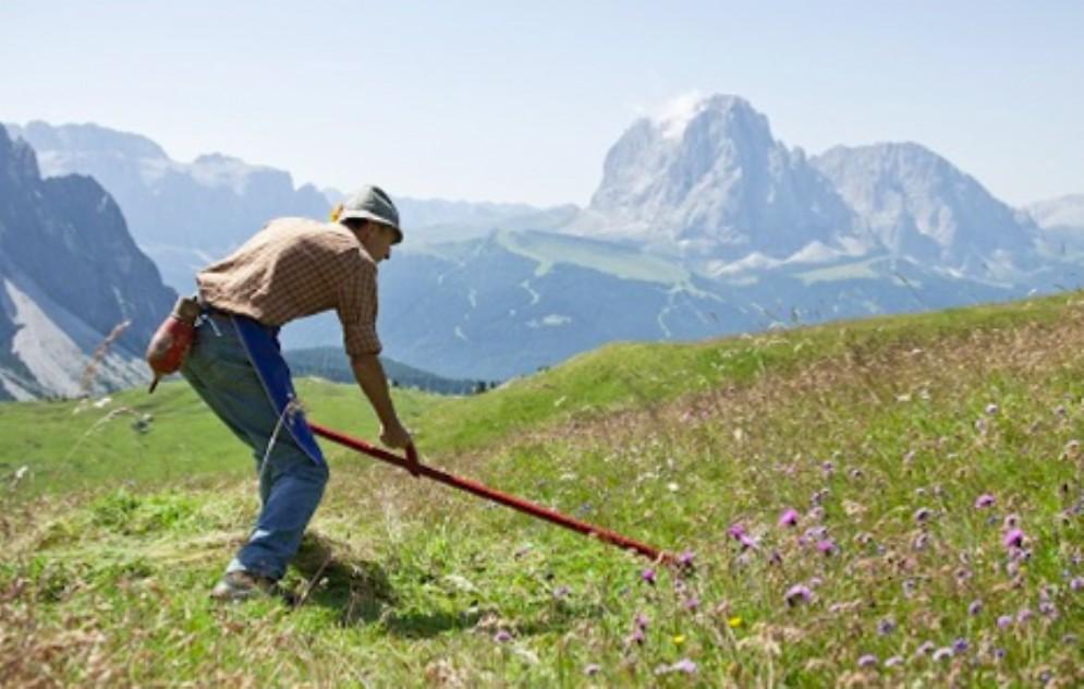 Finalmente in arrivo i 2,5 milioni di euro per gli agricoltori di montagna