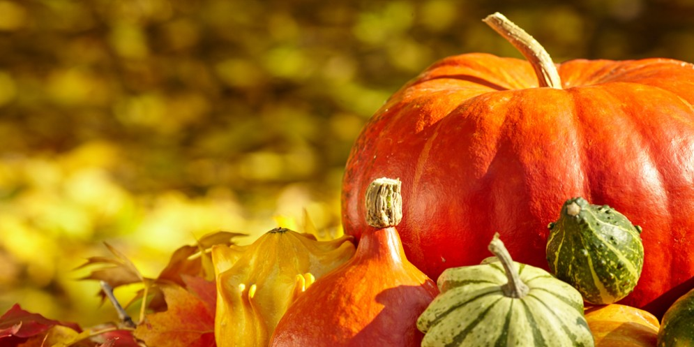 Festa della Zucca di Venzone: arriva l'edizione 26
