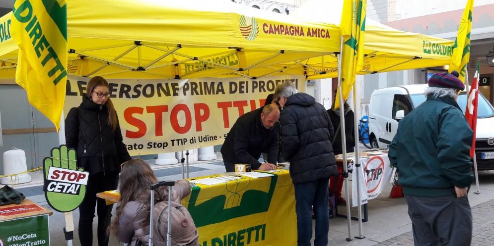Coldiretti Fvg contro l'accordo Ceta: «Taroccato anche il pecorino friulano»