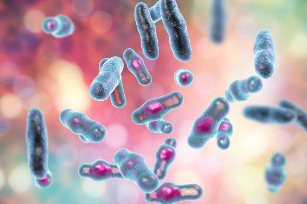 Batteri Clostridium