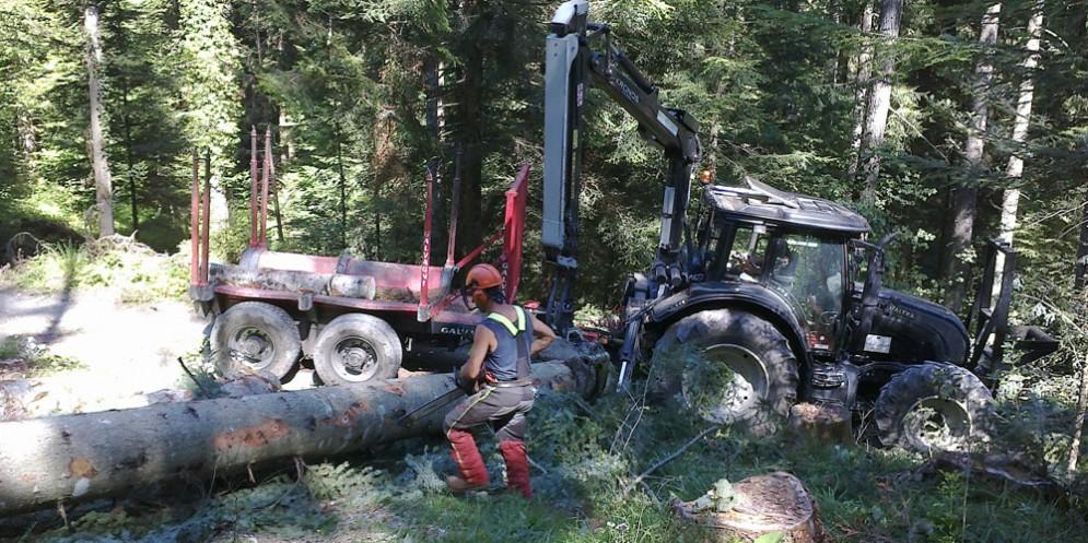 Incidente nei boschi di Coccau: ferito 25enne