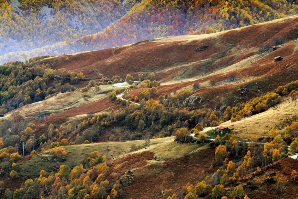 Lo spettacolo del foliage d autunno all Oasi Zegna 824e7145763