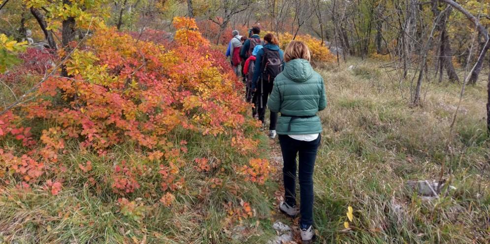 Escursioni guidate alla scoperta dei 'Sapori del Carso'
