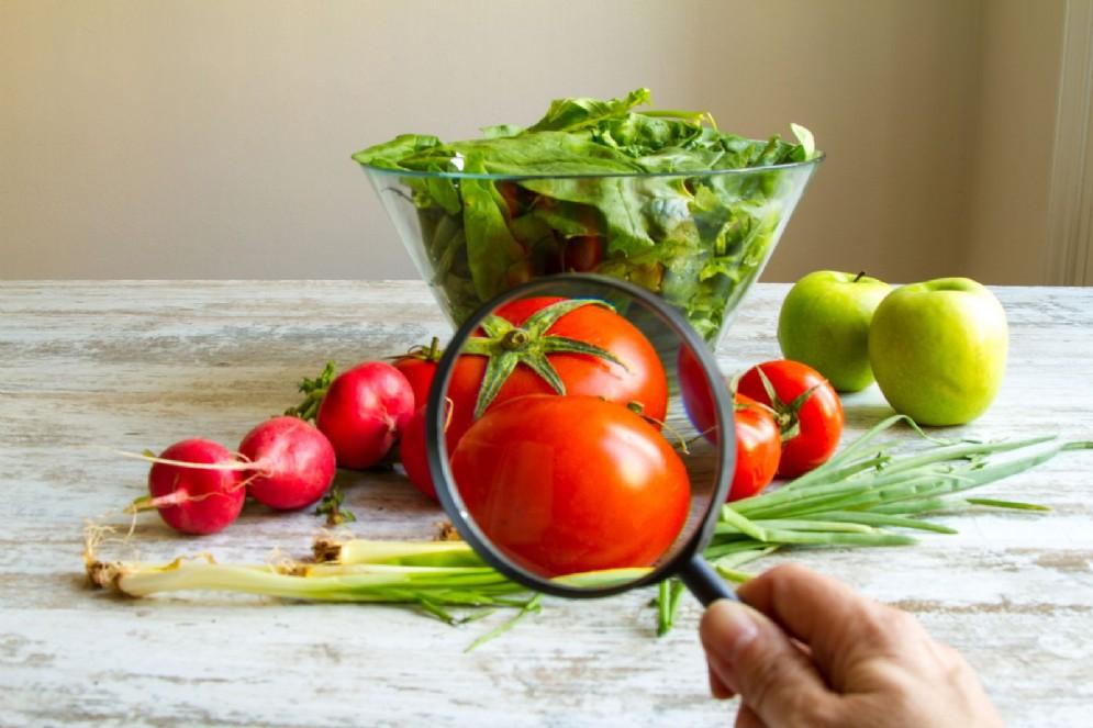 I pesticidi aumentano il rischio di cancro