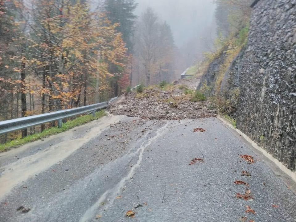 Alberi caduti e frane: il Friuli nella morsa del maltempo