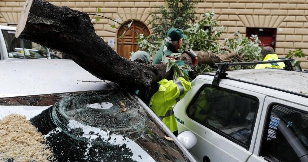 Interventi su alberi e rami caduti nel quartiere Prati da parte del Servizio Giardini di Roma Capitale durante l'ondata di maltempo sulla città