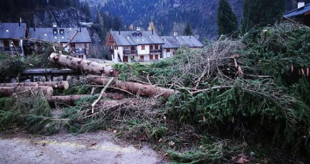 I danni causati dal maltempo a Caprile e Sac, frazioni di Alleghe (Belluno)