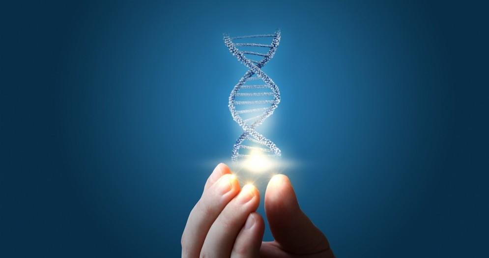 Il ritmo del DNA