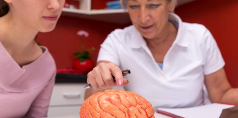 Il microbiota del cervello