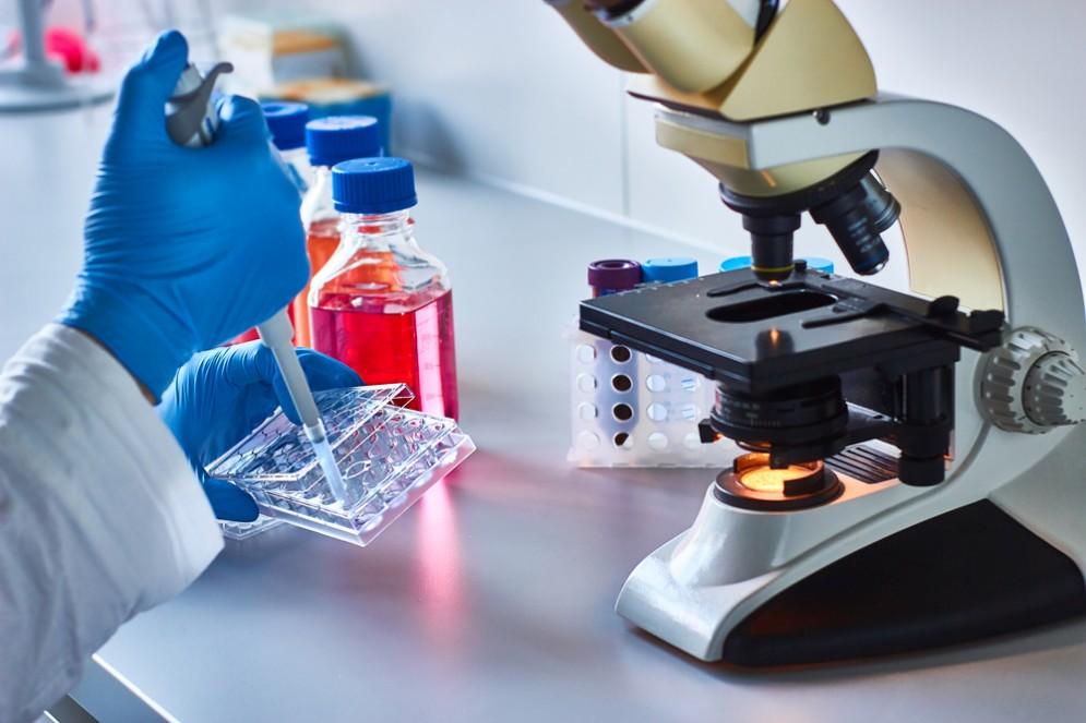 scienziati scoprono il freno dei tumori