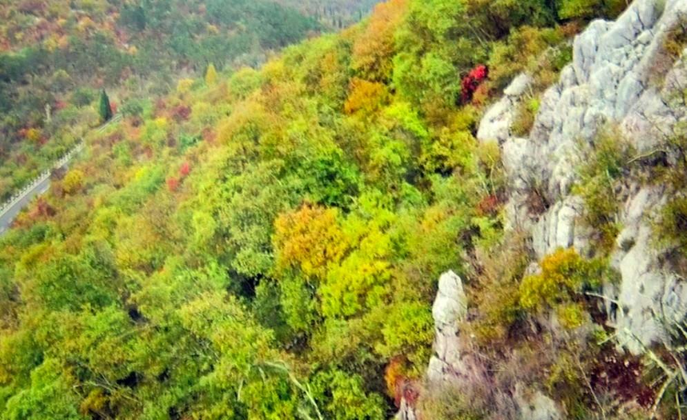 Ambiente: 400 mila euro dalla Regione per l'emergenza sul Monte Varda