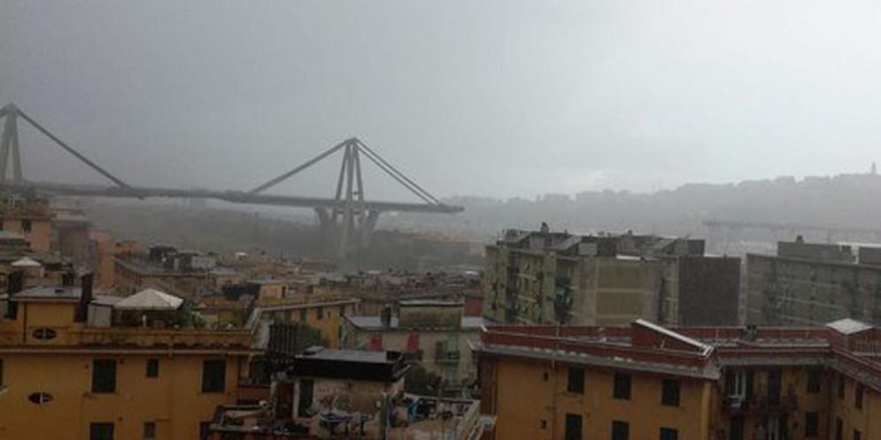 Cimolai e Calatrava insieme per il ponte di Genova