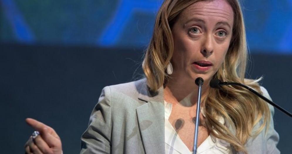 Giorgia Meloni, Presidente di Forza Italia
