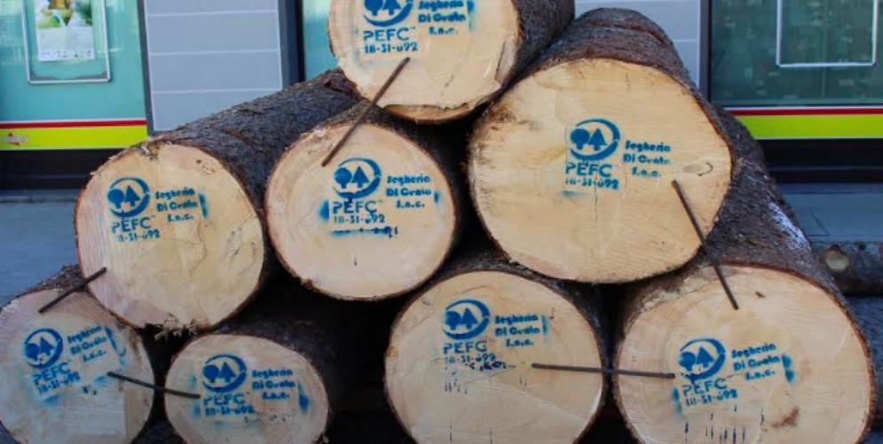 Orgoglio, solidarietà e qualità alla quarta Asta regionale del legname di pregio