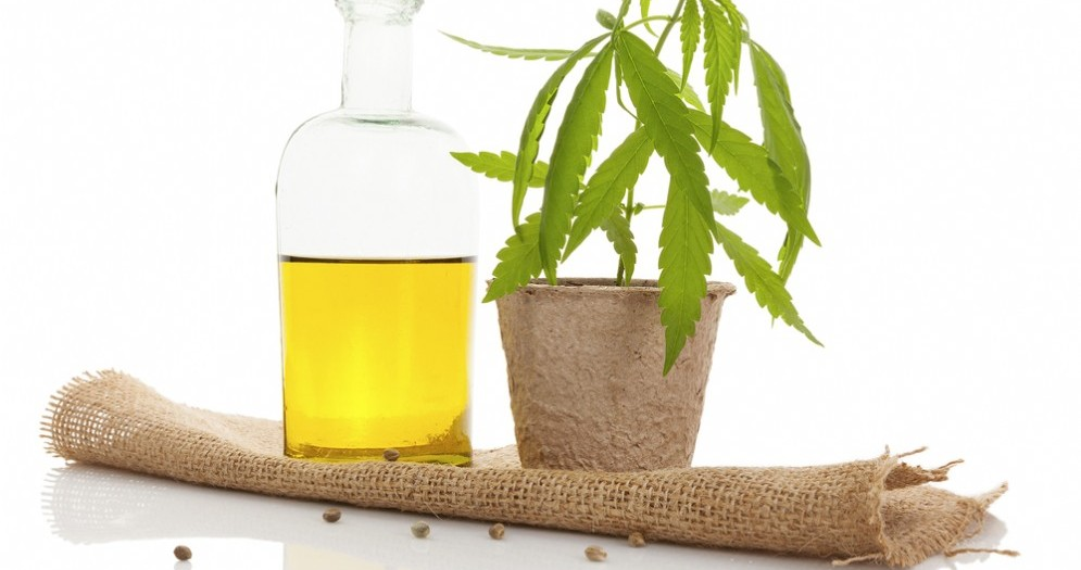 L'olio di Cannabis ha (quasi) guarito una bambina con 300 attacchi al giorno