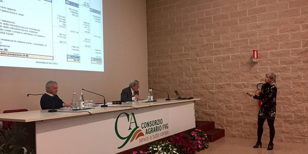 Consorzio Agrario Fvg: approvato il bilancio, utile di 618mila euro