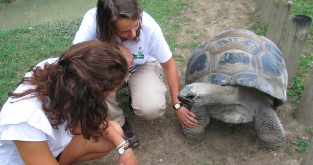 Parco Zoo di Lignano, tante le proposte per l'estate 2019