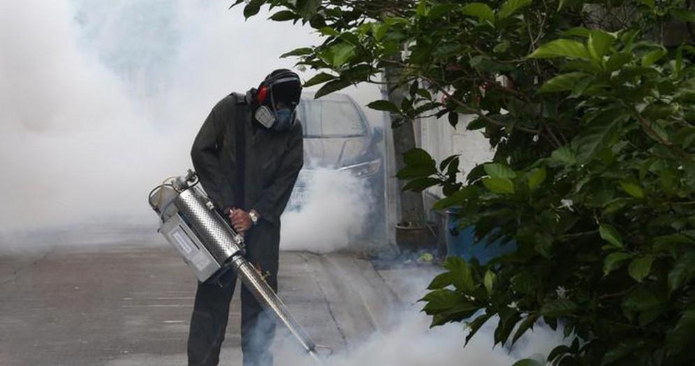 Caso Dengue nel Goriziano, via a disinfestazioni