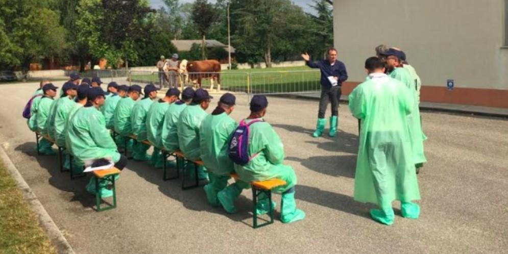 Delegazione turca in visita al Centro tori di Moruzzo