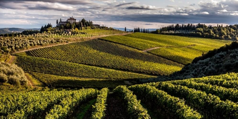 Nasce il vino «Chianti Gran Selezione», il top della qualità dei vini Chianti